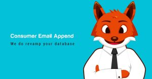 Consumer Email Append